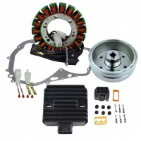 Ignition-Stator-Rotor-Regulator Rectifier-Stator Cover Gasket-Suzuki-LTF400 Eiger