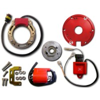 Ignition-Stator-Rotor-CDI-Ignition Coil-Suzuki-RMX50-TS50X