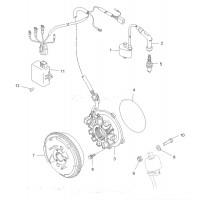 Volant Magnétique Rotor Polaris Trail Blazer 330 Trail Boss 330 ATP 330 Magnum 330 3087251