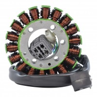 Stator CanAm DS250