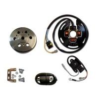 Allumage Stator Rotor Boitier CDI Bobine HT Husqvarna 390