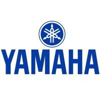 Stator YAMAHA FAZER 1000 ABS 2006-2011