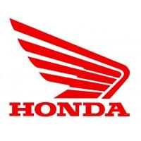 Stator Cover Gasket-Honda-Shadow VT750C-VT700C