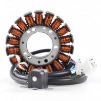 Stator Yamaha TTR 250 OEM 4GY-81410-01-00 4GY-81410-02-00