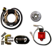 Ignition Stator Rotor Ignition Coil CDI Suzuki RM60 RM65 RM80 RM85 RM100 RM125 RM150