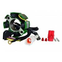 Allumage Stator Husaberg FC450 FC550 OEM 80039004100