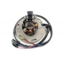 Alternateur Stator Allumage Suzuki RM125 RM250
