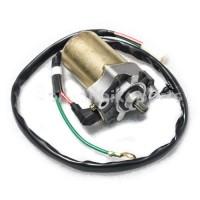 Starter Motor-Daelim-SH100