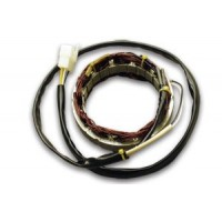 Alternateur Stator Allumage Honda CB650 CB650SC Nighthawk
