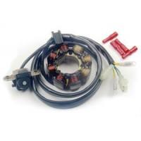 Alternateur Stator Allumage Eclairage Honda CRF250 CRF450