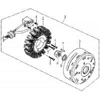 Volant Magnétique Rotor Triton 450