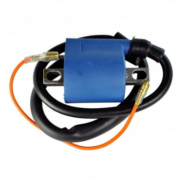 6 V Bobine D/'allumage Allumage Yamaha rs100 rs125 rx125 allumage Coil