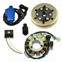 Ignition-Stator-Rotor-Regulator-Ignition Coil-Yamaha 350 Banshee