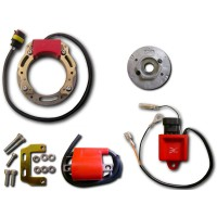 Stator-Rotor-Ignition Coil-CDI-Aprilia-AF1 125-Pegaso 125-Red Rose 125-RS125-RX125-Tuareg 125