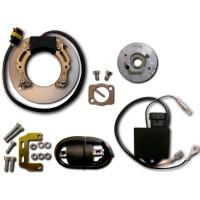 Allumage Stator Rotor Boitier CDI Bobine Honda XL250R XL250S XR250 XR250R XR500 XR500R