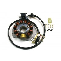 Stator - Gas Gas - EC125-SM125-EC200-EC250-SM250-EC300-Wild HP 300