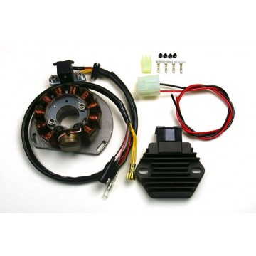 Stator-Regulator Rectifier-GasGas-EC125-SM125-EC200-EC250-SM250-EC300-Wild HP300