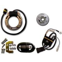 Allumage Stator Rotor Boitier CDI Bobine HT KTM 440SX 500MX 500MXC 500SX 550MXC