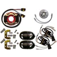 Allumage Stator Rotor Boitier CDI Bobine Yamaha TDR250 TZR250