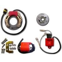 Allumage Stator Rotor Boitier CDI Bobine Vespa 50 Ciao
