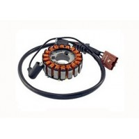 Alternateur Stator Allumage Derbi GP1 250 Rambla 250 Gilera Nexus 125 Nexus 250 Nexus 300 Malaguti Madison 250