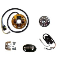 Allumage Eclairage Stator Rotor CDI Bobine Rieju DRAC50 MRT50 MRX50 RR50 RRX50 RS1 RS2 SMX50 Spike Tango 50