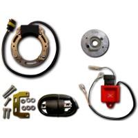 Alternateur Stator Volant Magnétique Rotor Boitier CDI Bobine Allumage Yamaha 200 Blaster