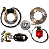 Allumage Stator Rotor Boitier CDI Bobine Kawasaki KX125 KX250