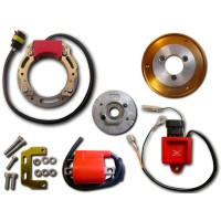 Ignition-Stator-Rotor-Ignition Coil-CDI-Italjet-Formula 50-Torpedo 50-Suzuki-AH50-AJ50-AP50 Address