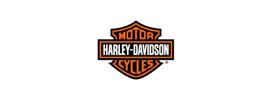 Alternator - Harley Davidson