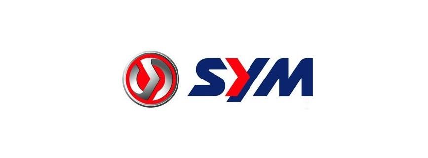Sym-600 Quaraider