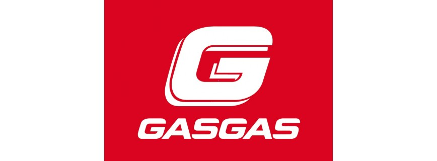 300 cc-GasGas