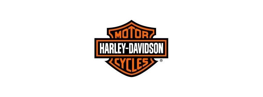Starter Motor - Harley Davidson